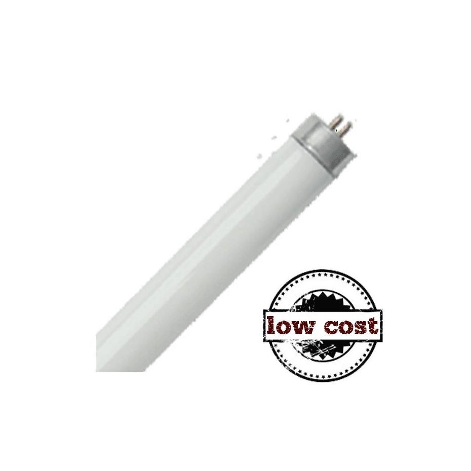 Caja 25 Fluorescentes 18W T8 G13 6400K 60 cm HomePluss