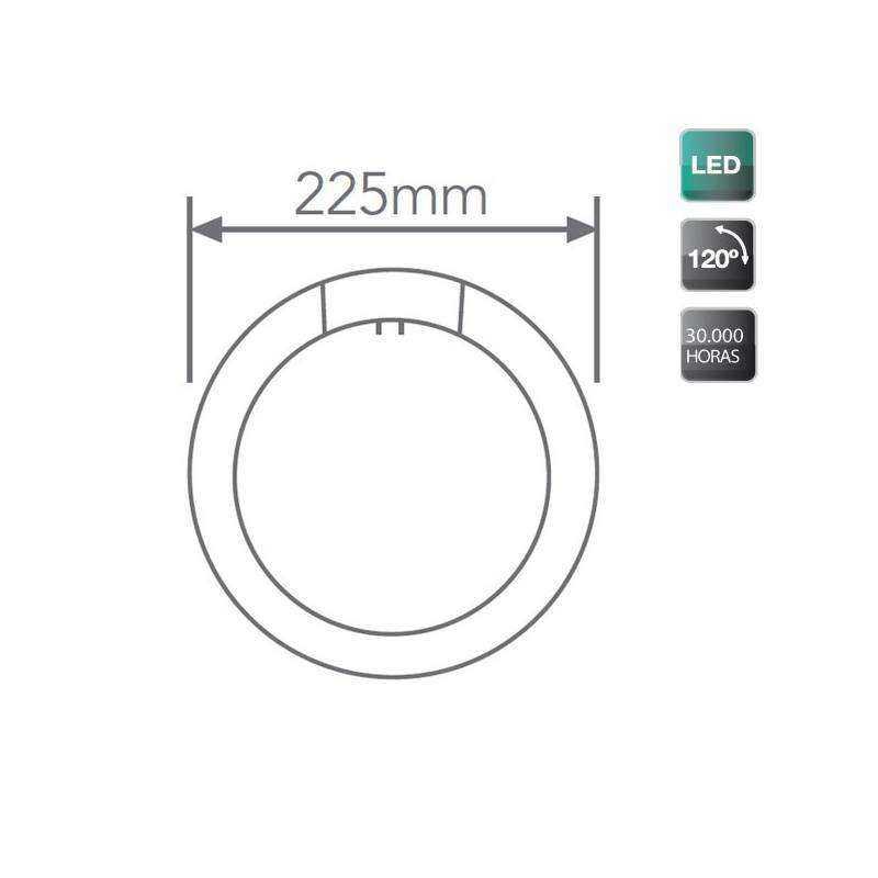 Tubo fluorescente led circular g10q 12w 960lm 6500k for Tubo fluorescente circular 32w