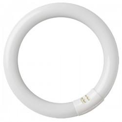 Tubo fluorescente led Circular G10q 12W 960lm 6500K