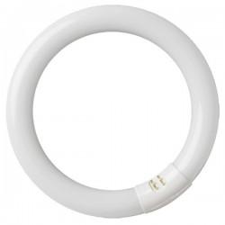 Tubo circular LED Ø400 32W...