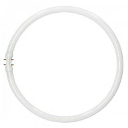 Tubo fluorescente circular...
